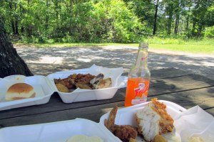 Best fried chicken in Greene County